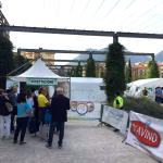 sport-salute-e-solidarieta-torna-il-campus3s-2